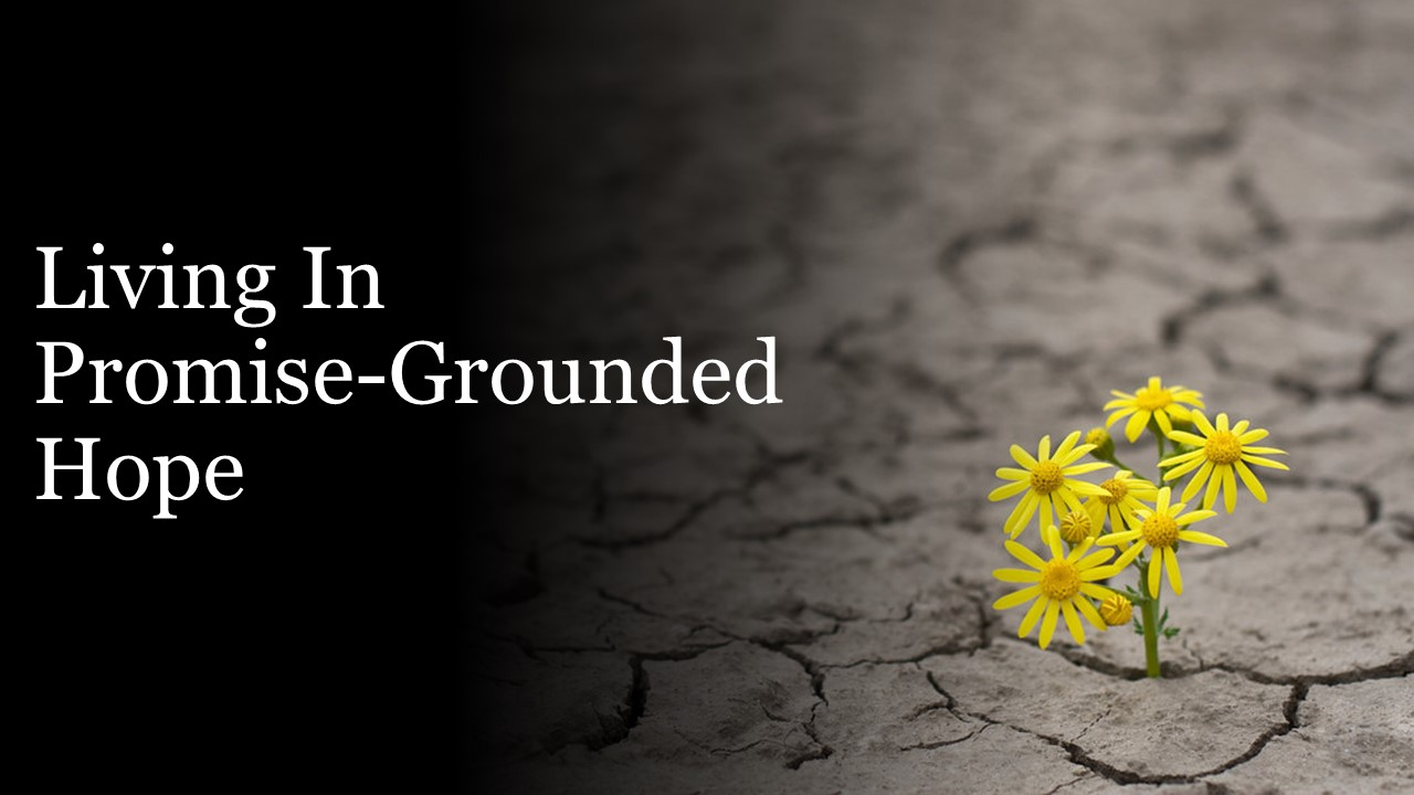 Trusting the Promises of God for 2021: Living in Promise-Grounded Hope