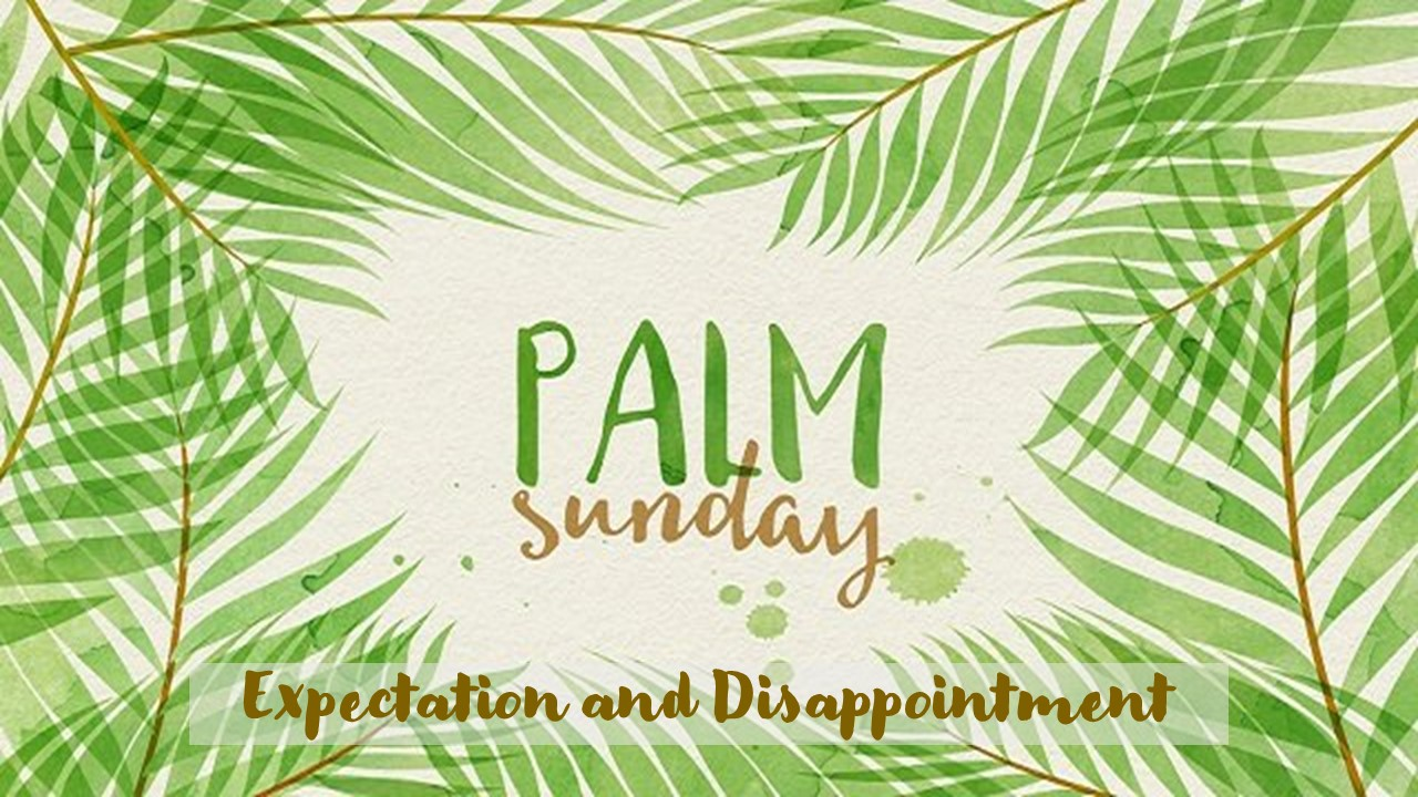 Palm Sunday: Expectation and Disappointment