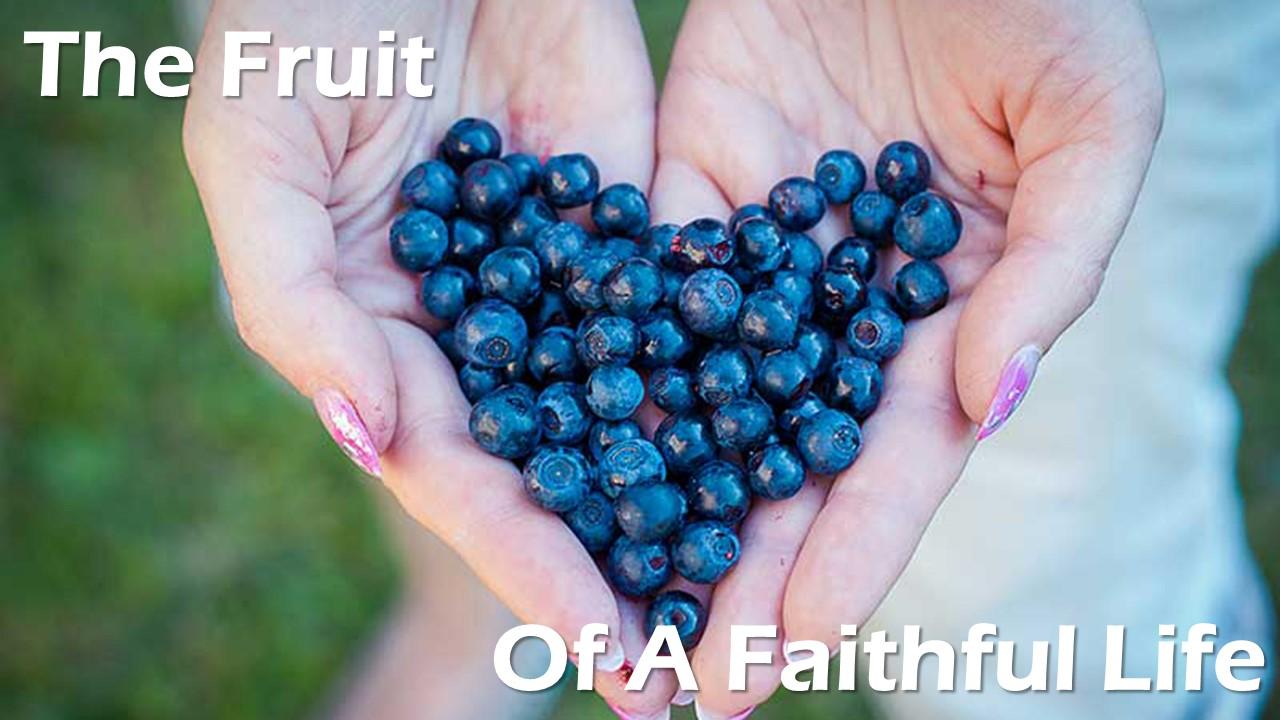 The Fruit of a Faithful Life